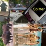 Splitter-M